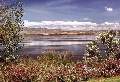 Visitar Lago Nakuru